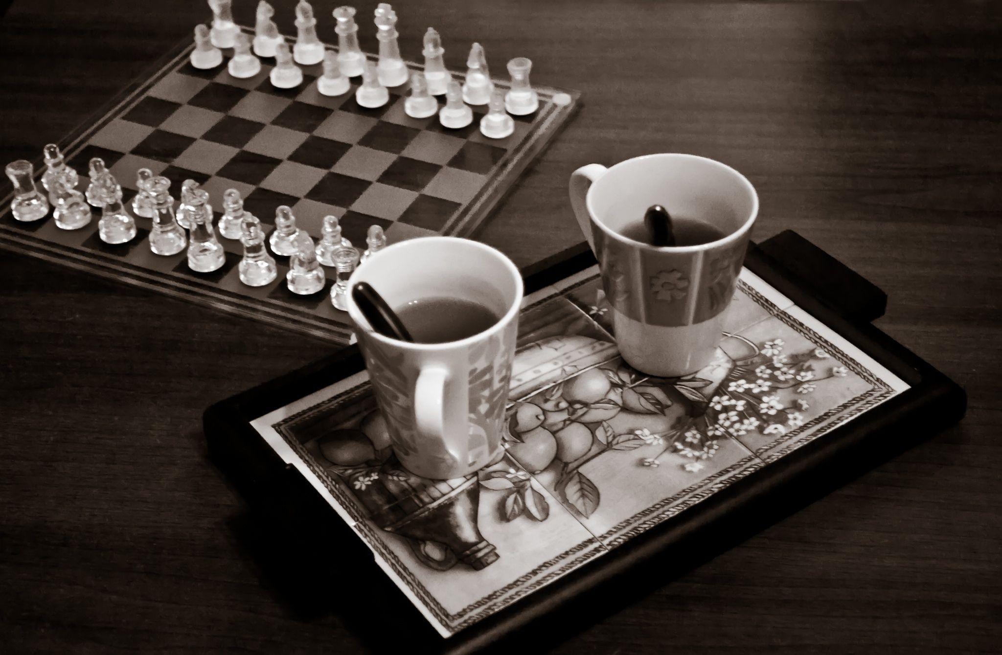 کافه شطرنج، ایده ای منحصر به فرد و پولساز