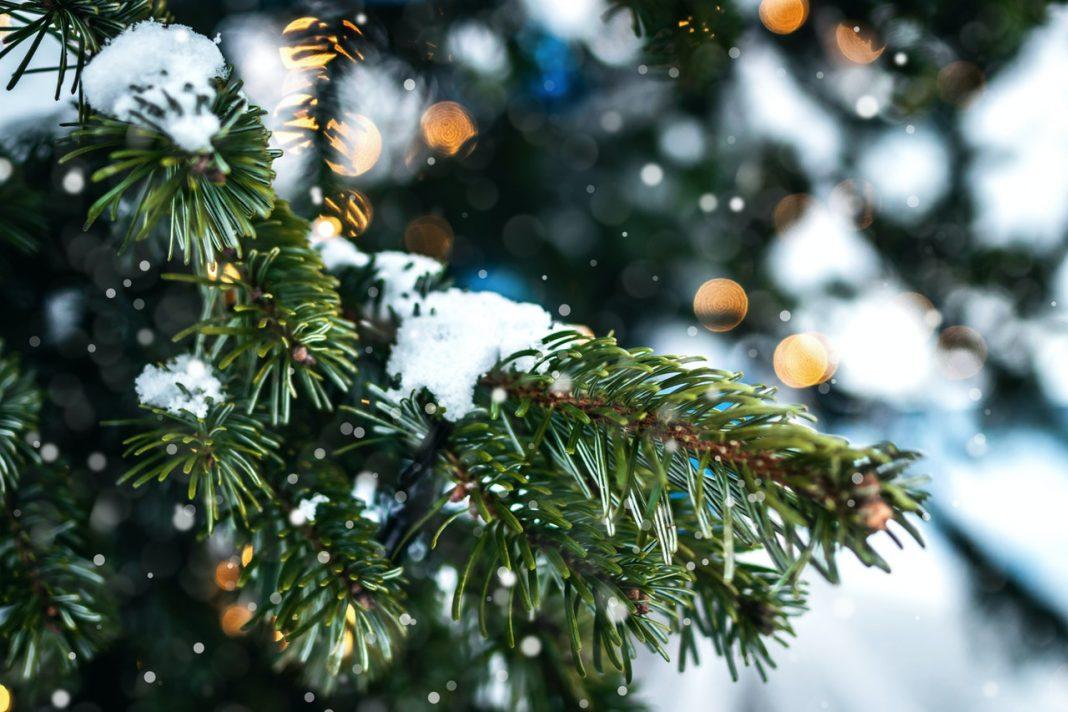 تعطیلات کریسمس