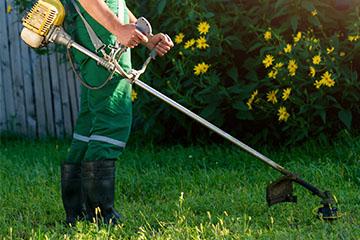 باغبان مخصوص باغ