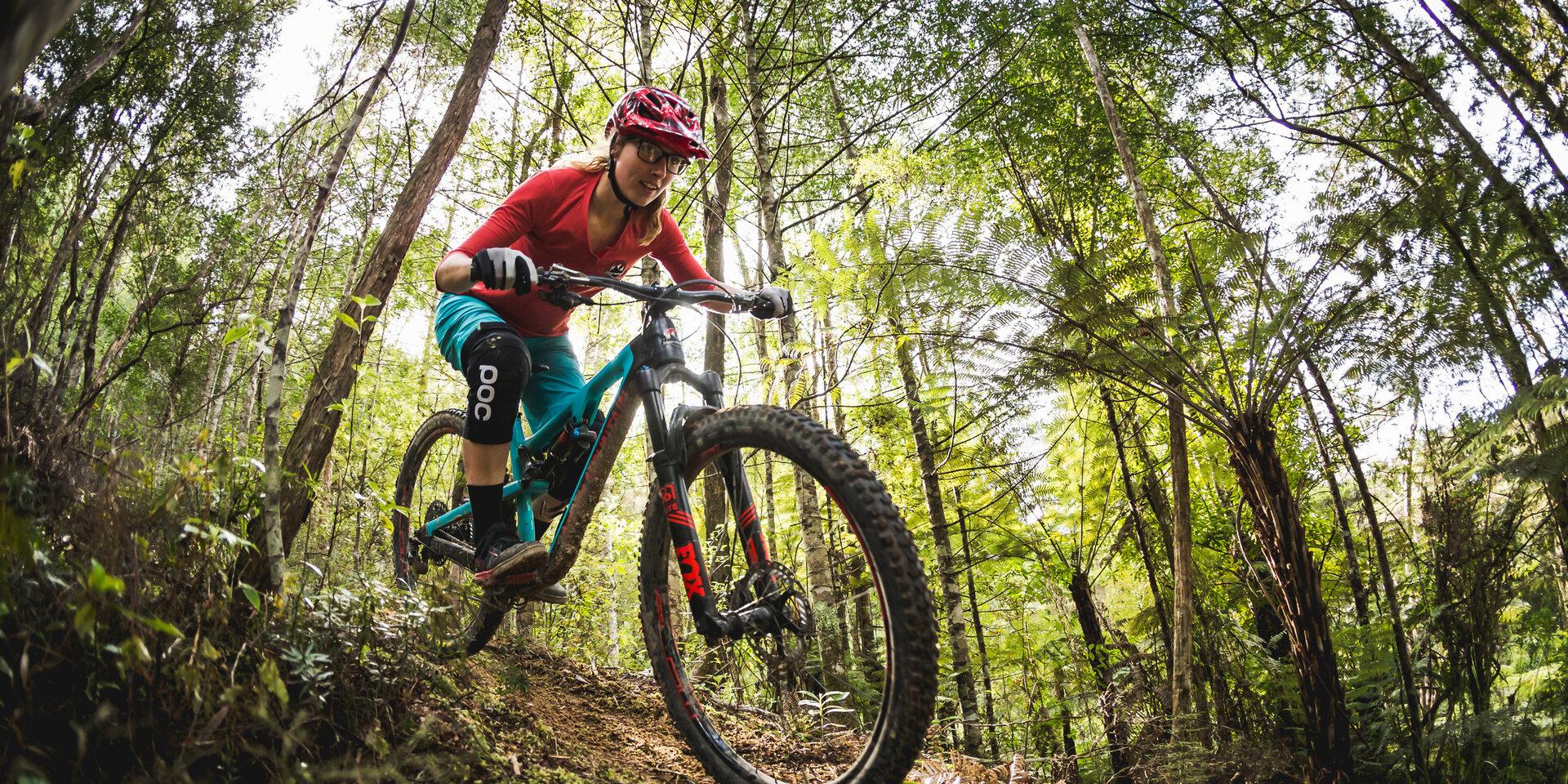 دوچرخه سواری کوهستان، ایده ای شگفت انگیز و جدید